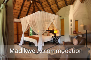 Madikwe-Accommodation